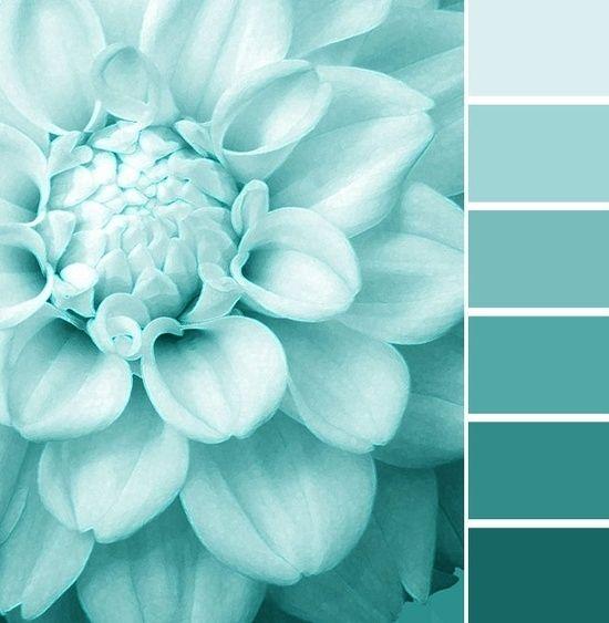 в  цветах:   Белый, Бирюзовый, Голубой, Синий.  в  .
