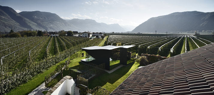 Архитектура в цветах: черный, серый, светло-серый, белый, темно-зеленый. Архитектура в стиле минимализм.