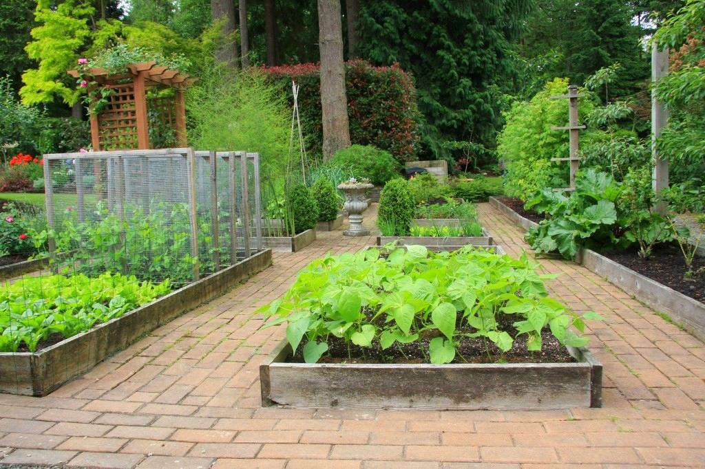 Ландшафт в цветах: серый, темно-зеленый, салатовый. Ландшафт в стиле экологический стиль.
