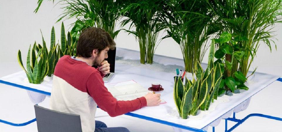 Среди травы: новый формат офисного стола