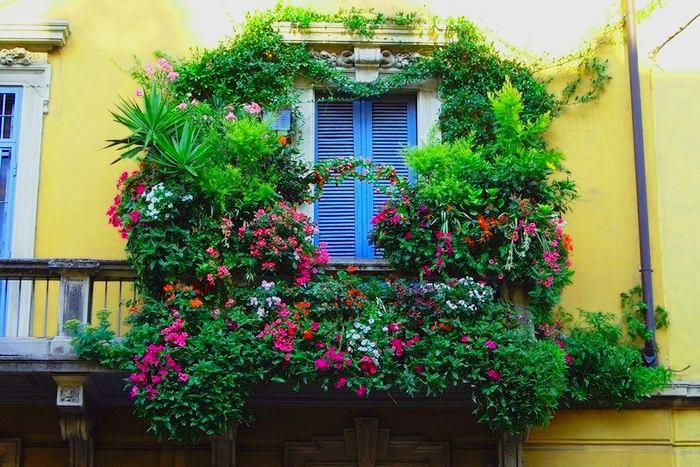 Балкон, веранда, патио в цветах: черный, серый, темно-зеленый, салатовый, сине-зеленый. Балкон, веранда, патио в стилях: средиземноморский стиль, экологический стиль.