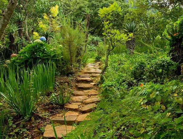 Ландшафт в цветах: черный, темно-зеленый, бежевый. Ландшафт в стиле экологический стиль.