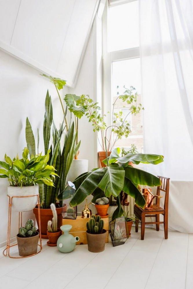 Декор в цветах: светло-серый, темно-зеленый, салатовый, бежевый. Декор в .