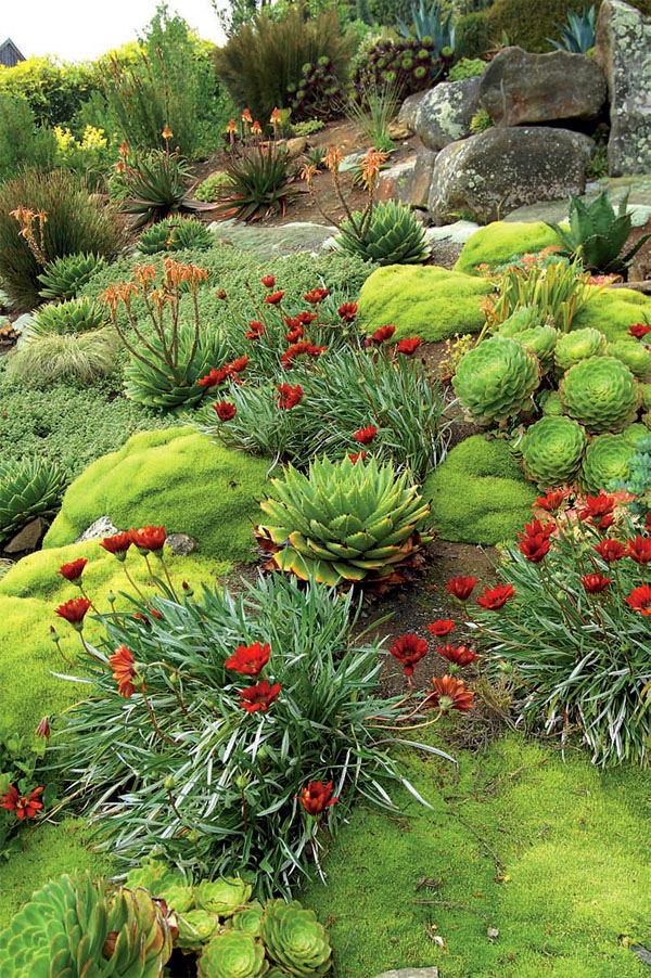 Ландшафт в цветах: зеленый, серый, светло-серый, бордовый, лимонный. Ландшафт в стилях: средиземноморский стиль, экологический стиль, эклектика.
