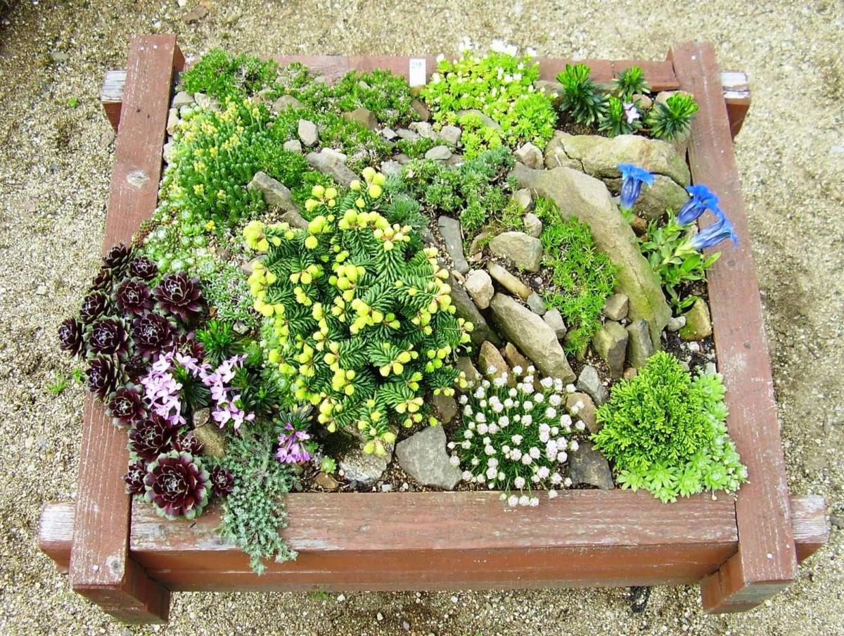 Ландшафт в цветах: зеленый, светло-серый, бордовый, лимонный, темно-зеленый. Ландшафт в стилях: средиземноморский стиль, экологический стиль.