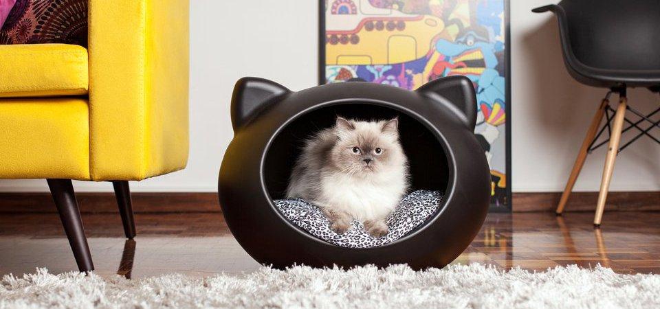 Где купить 10 очаровательных кошачьих домиков: обзор с ценами и адресами магазинов