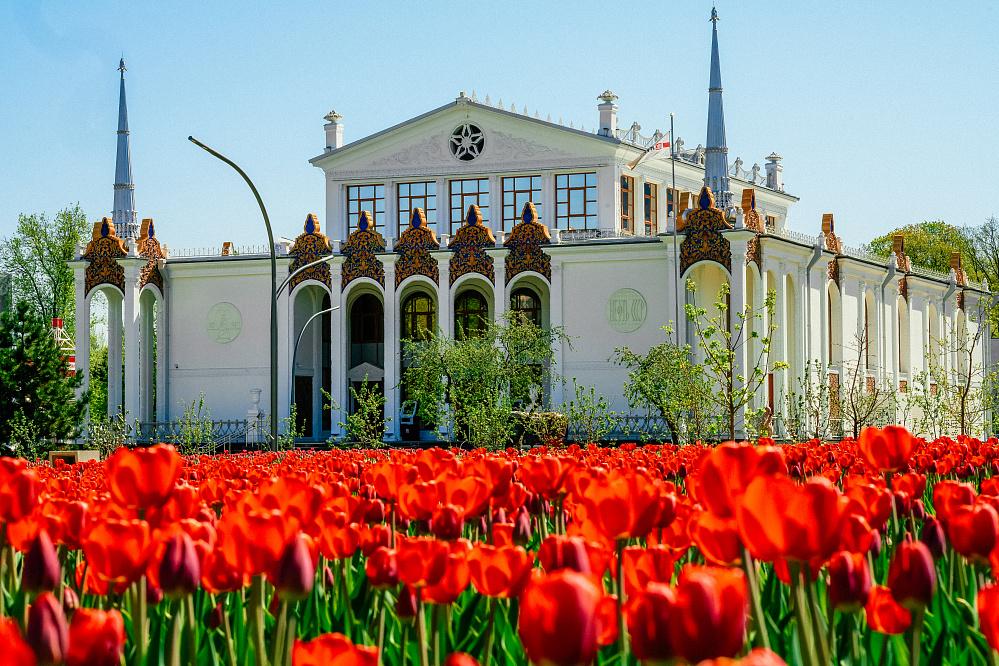 Программа в честь дня рождения ВДНХ: чем порадуют жителей и гостей Москвы